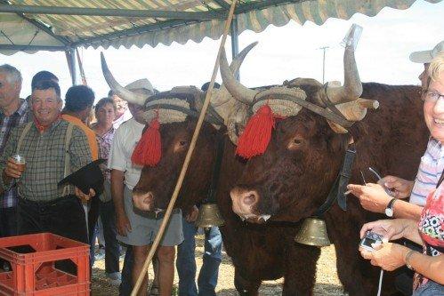 Fête du patrimoine de Manziat le 5 Août 2012 15