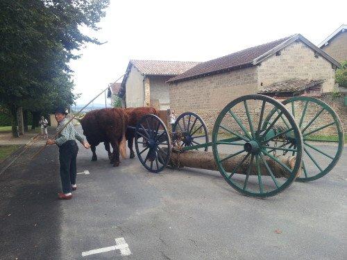 Fête du patrimoine de Manziat le 5 Août 2012 5