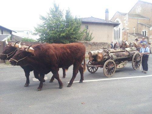 Fête du patrimoine de Manziat le 5 Août 2012 7