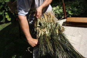 La fabrication des coussins d'attelage  ou pieumets 14